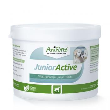 Junior Active Vital Formel Pulver 250g